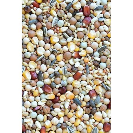 BP-D - Bez pšenice