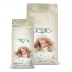 BonaCibo Adult Cat Lamb & Rice