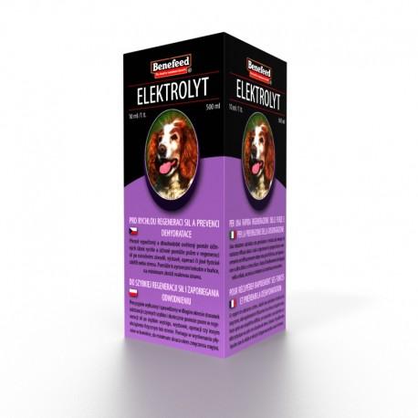Elektrolyt Pes